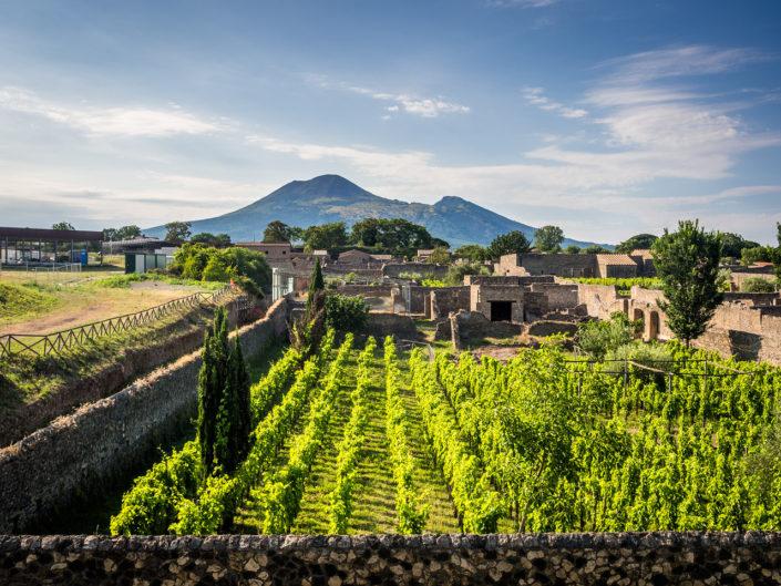 Pompeii & Vesuvius Tours