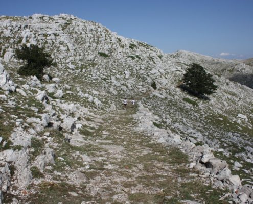 Cilento hikes